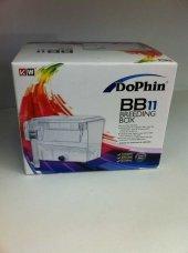 Dophin Bb 11 Breeding Box Yavruluk