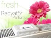 Lykia Mini Hijyenik Radyatör Parfümü