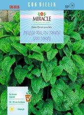 Miracle Melissa Oğul Otu Tohumu (200 Tohum) 50 Adet