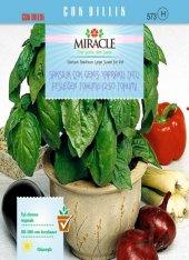 Saksılık Çok Geniş Yapraklı Tatlı Fesleğen Tohumu(250 Tohum) 50 A