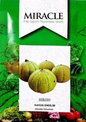 Miracle On Dilim Kavun Tohumu (10 Gram)