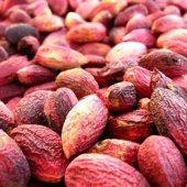 Elmacı Pazarı Şenkaya Gıda Ağaçaltı Kırmızı Kabuklu Kavrulmamış Antep Fıstığı 1 Kg