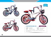 20 Jant Atak Erkek Çocuk Bisikleti (Spor Double Jant 20 60)
