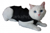 Win Pet Ameliyat Sonrası Kedi Köpek Elbisesi Xs 42*34 Cm