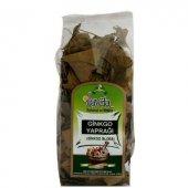 Ginkgo Biloba Yaprağı Paket Ücretsiz Kargo