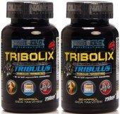 2 Kutu Nanobolix Tribolix Tribulus Terrestris 750 Mg 90 Kapsül