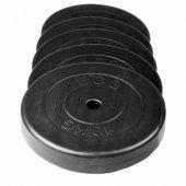 Ecgspor 2,5kg Disk Ağırlık Plakası Fitness Plakası