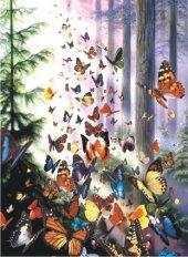 Puzzle 1000 Parça Kelebek Ormanı Butterfly Woods
