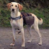 Trixie Köpek Sırt Çantası L Xl 31x17cm