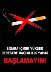 At 1049 Sigara İçmek Yüksek Derecede Bağımlılık Yapar, Başlama
