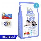 Brit Care Lilly I Ve Hassas Tahılsız, Somon&kuzulu Kedi Maması 7 Kg