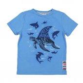 Denimart Erkek Çocuk Kaplumbağa Baskılı Tişört
