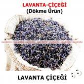 Lavanta Lavanta Çiçeği (Tomurcuk) 500 Gr Doğal Taze