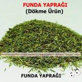 Funda Yaprağı 250 Gr Doğal Taze