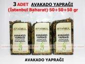 3 Adet Avakado Yaprağı 3x50gr 1.kalite Taptaze