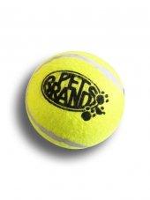 Büyük Tenis Topu Köpek Oyuncağı 12,5 Cm