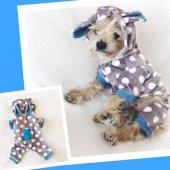 Mavi Teddy Dots Kulaklı Tulum By Kemique Köpek Kıyafeti