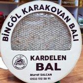 Karakovan Bingöl Balı 1.300 Gr