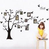 Aile Soy Ağacı Fotoğraf Albümlü Ağaç Duvar Resmi Xxl Dekor Çıkart