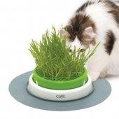 Catit Senses Kedi Otu Yetiştirme Kabı