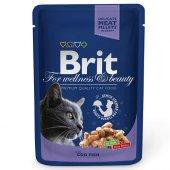 Brit Premium Codfish Morina Balığı Kedi Yaş Maması 100 Gr