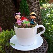 Romantik Aşk Sandığı Minyatür Bahçesi