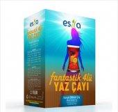 Esila Fantastik 4 Lü Yaz Çayı 45 Süzen Poşet Orjinal Ürün