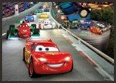 Disney Cars 4lü Çocuk Puzzle (Trefl 35+48+54+70 Parça)