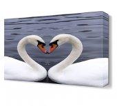 Kuğuların Aşkları Tablosu