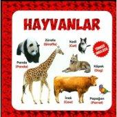 Hayvanlar Türkçe Ve İngilizce