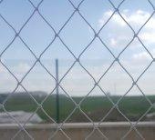 Kuş Filesi 5x13 65 M2 Kuş Ağı Balkon Ağı Balkon Filesi Güvercin Ağı Güvercin Filesi Kuş Önleme Filesi Güvercin Önleme Filesi