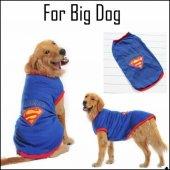 Superman Tshırt Büyük Köpekler İçin