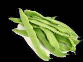 Mutlu Sebzeler Taze Fasulye (1kg)