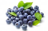 Mutlu Sebzeler Yaban Mersini Blue Berry 125grlık 1 Paket
