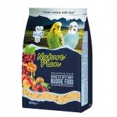 Nature Plan Ballı Meyveli Kabuksuz Muhabbet Kuş Yemi 400 Gr (10