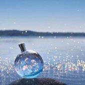 Hermes Eau Des Merveılles Bleue Edt 50 Ml Kadın Parfüm