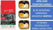 Proplan Sterilised Somonlu Kısır Kedi Maması 12 Kg Bonus Paket