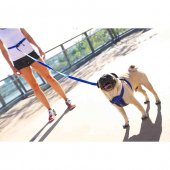 Ezydog 825 Lrr25ch Leashes Road Runner Zero Shock Köpek Gezdirme