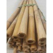 Bambu Cubuk 300 Cm 15 25 Mm 50 Adet Bambu Bitki Destek Çubuğu Dekoratif Bambu Çubuk