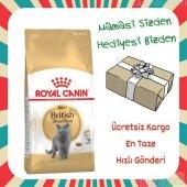 Royal Canin British Shorthair Kedi Maması 4 Kg + Hediyeli