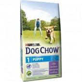Dog Chow Kuzu Etli Yavru Köpek Maması 14 Kg