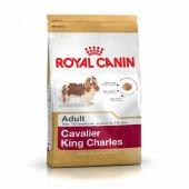 Royal Canin Cavalier Adult King Charles Köpek Maması 3 Kg.