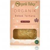 Organik Bahçe Organik Bebek Tarhanası 100 Gr