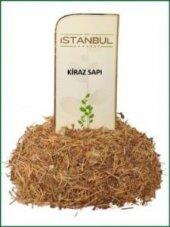 Istanbul Baharat Kiraz Sapı 90 Gr