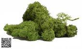 Maket Yosun Açık Yeşil