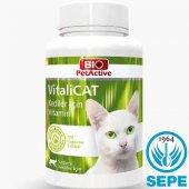 Vitalicat 150 Tablet Kedi İçin Vitamin 75 Gr