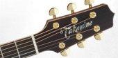 Takamine P7jc Elektro Akustik Gitar