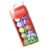 Colorbank 12 Renk Sulu Boya