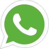 Whatsaap Logo Sticker