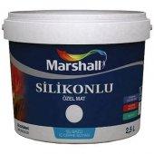 Marshall Silikonlu Özel Mat 2.5 Lt. (Tüm Renkler)